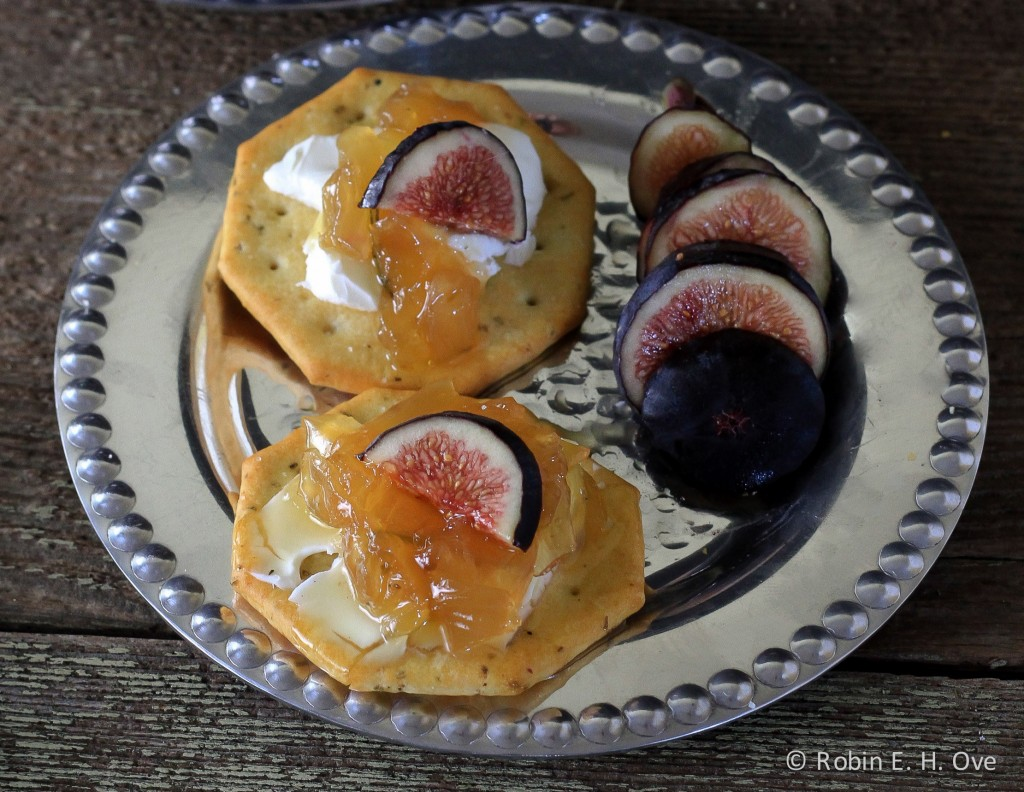 Onion Jam and Fig Appetizer