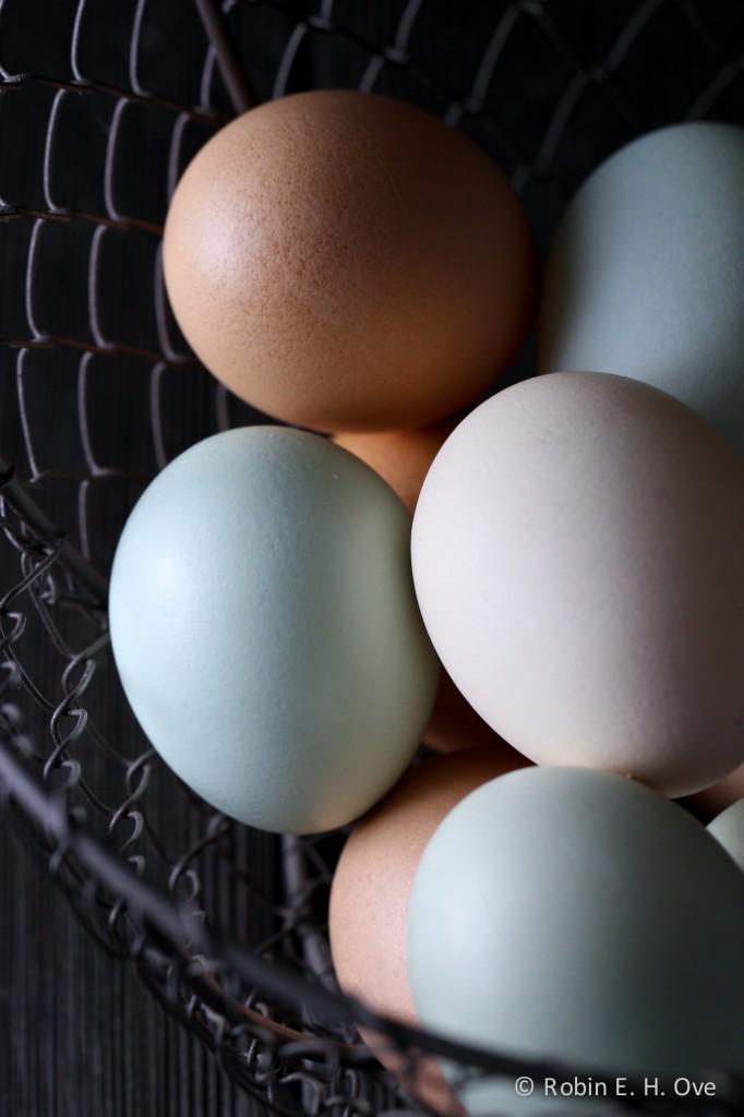 eggs-dark-5851