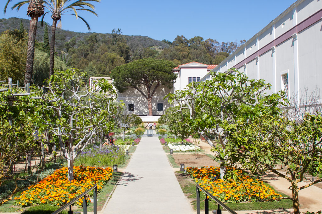 Getty Villa, Malibu Culinary Garden © Robin E. H. Ove All rights reserved